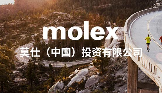 莫仕(中国)投资有限公司招聘信息