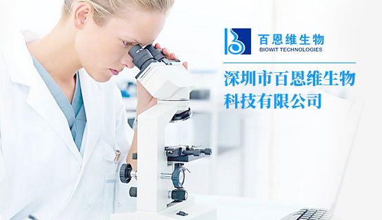 深圳市百恩维生物科技有限公司招聘信息