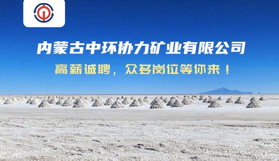 内蒙古中环协力矿业有限公司招聘信息
