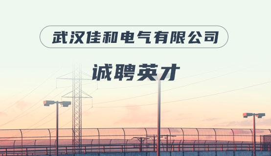武汉佳和电气有限公司招聘信息