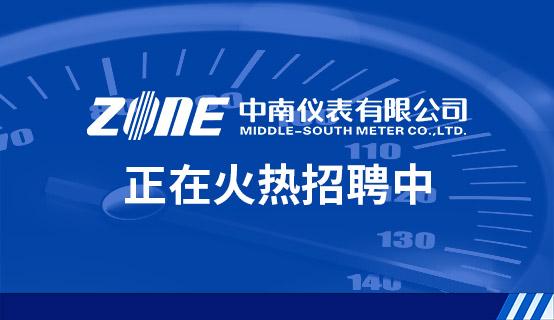 中南仪表有限公司招聘信息