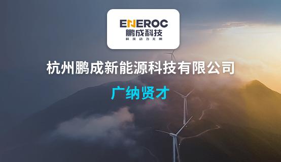 杭州鹏成新能源科技有限公司招聘信息