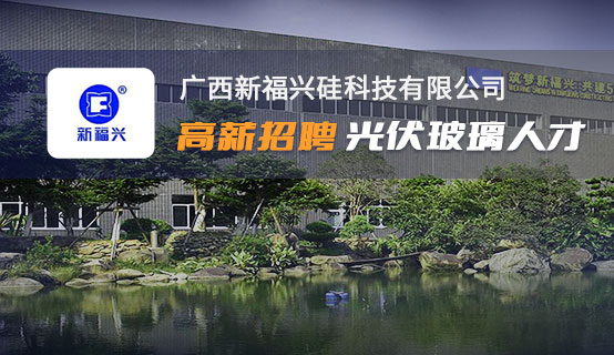 广西新福兴硅科技有限公司招聘信息
