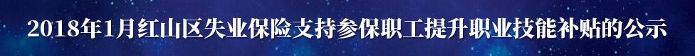 2018年1月红山区失业保险支持参保职工提升职业技能补贴的公示����淇℃��