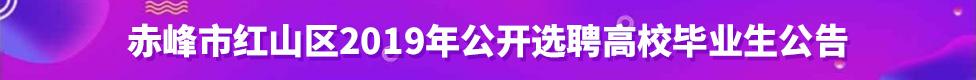 赤峰市红山区2019年公开选聘高校毕业生公告招聘信息