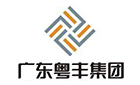 粤丰环保电力有限公司