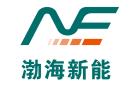 天津市渤海新能科技有限公司