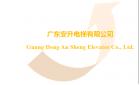 广东安升电梯有限公司