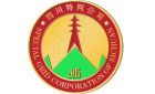 四川省特网电力工程设计有限公司