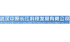 武汉中原长江科技发展有限公司