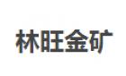 南宁大石围矿业开发有限责任公司乐业林旺金矿