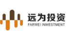 广东远为投资有限公司
