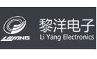 温州市黎洋电子有限公司